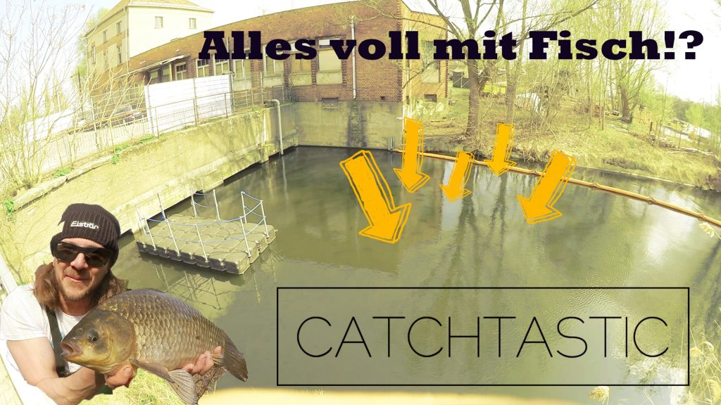 Angelvideo zum Fischen mit Stippe in Berlin